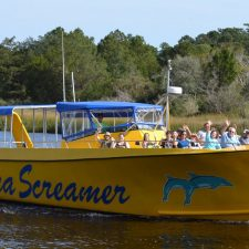 Sea Screamer Canopy